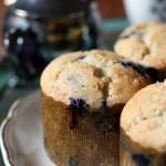 blueberrymuffins11