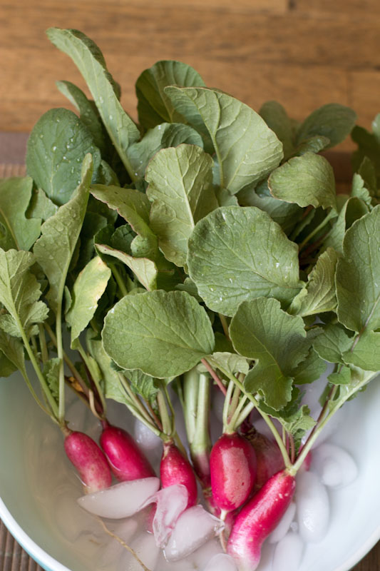 urban farm radishes