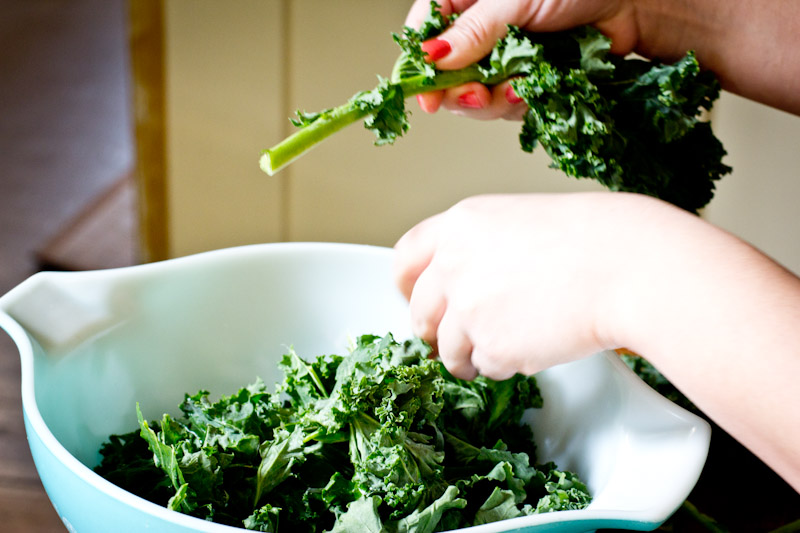 Easy Kale Chip Recipe | Vintage Mixer