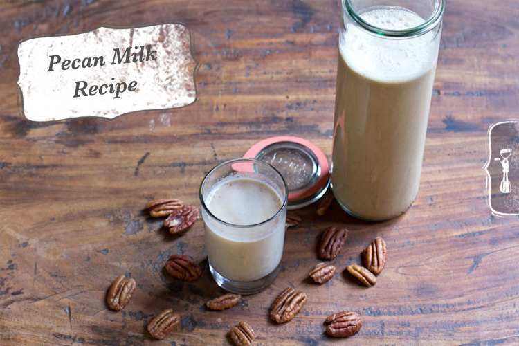Pecan Milk Recipe | Vintage Mixer