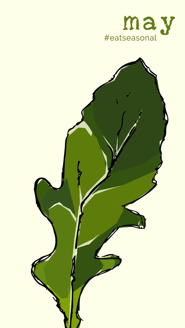 Seasonal Produce List for May