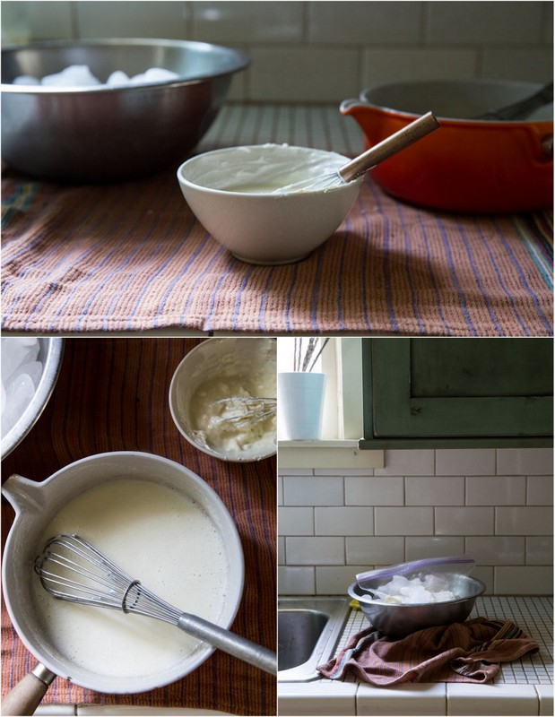 ginger vanilla frozen yogurt recipe