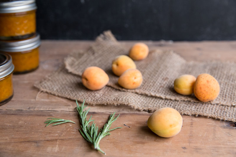 apricot rosemary jam recipe • theVintageMixer.com #canning #preserving