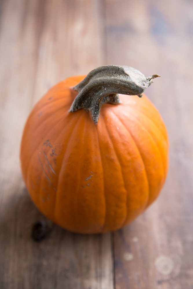 Homemade Pumpkin Puree Recipe • theVintageMixer.com