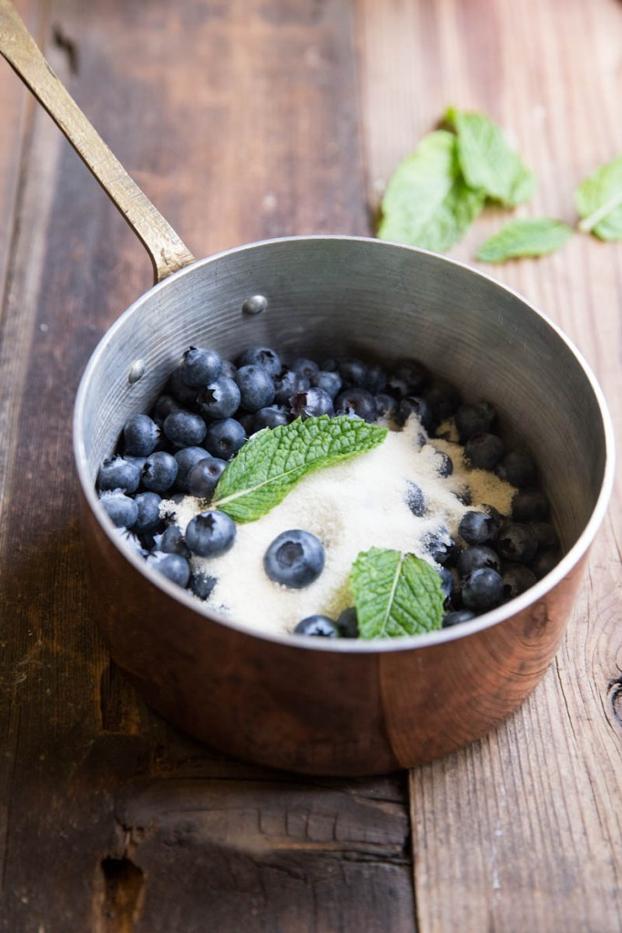 blueberry mint gin cocktail recipe •theVintageMixer.com #cocktail