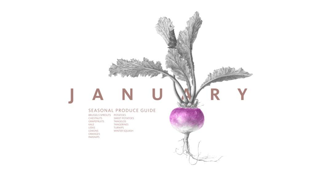 January Produce Guide • theVintageMixer.com #eatseasonal #seasonalrecipes