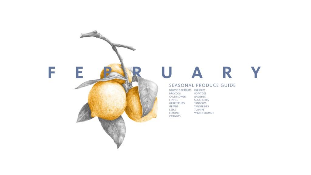 February Seasonal Produce Guide • A guide to what produce is in season along with recipes. Save to your computer and iPhone. #eatseasonal #healthyeating #healthyrecipes
