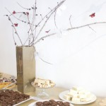 Chocolate Dipped Hazelnut Lace Cookie Recipe