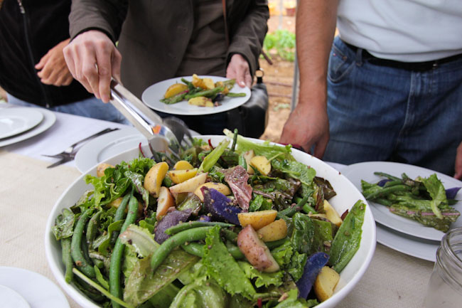 Farm Salad Recipe with Beans and Potatoes