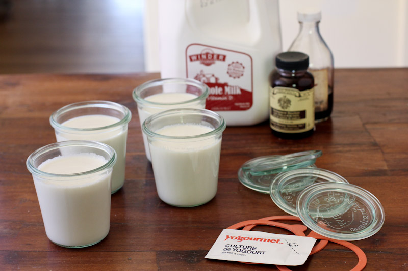 how to make homemade vanilla bean yogurt