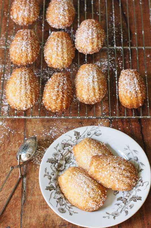 Honey Madeleines Recipe