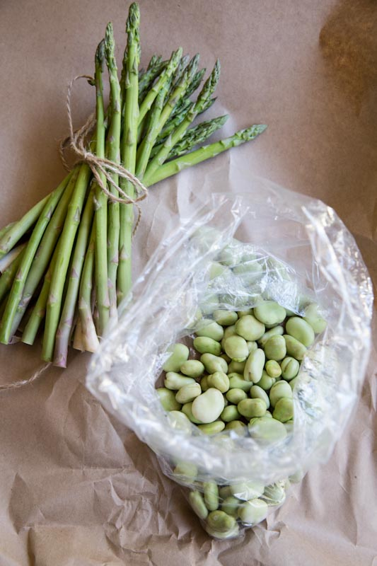 Fava Bean and Asparagus Orzo Salad Recipe • theVintageMixer.com