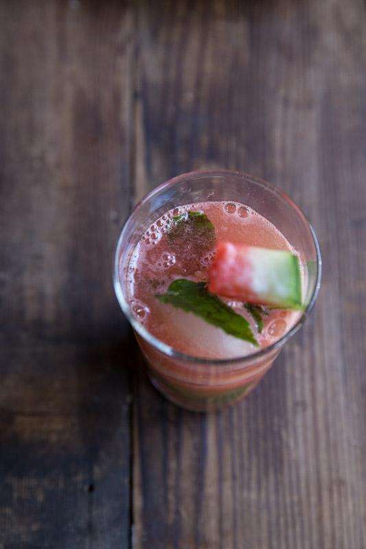 Watermelon Mojito Recipe • theVintageMixer.com