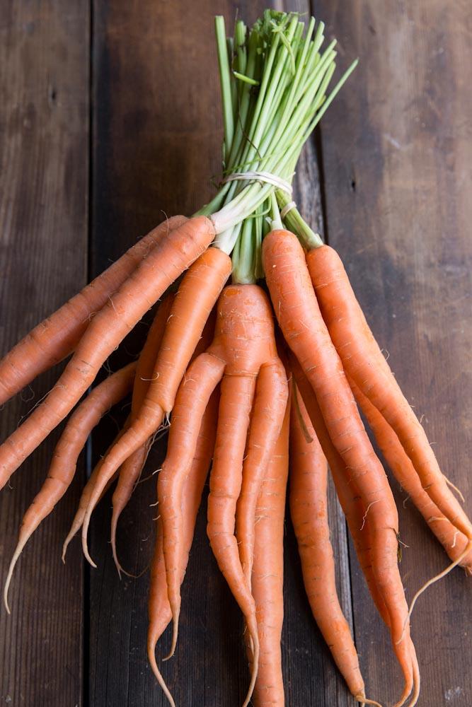 Blender Roasted Vegetable Marinara Sauce Recipe • theVintageMixer.com