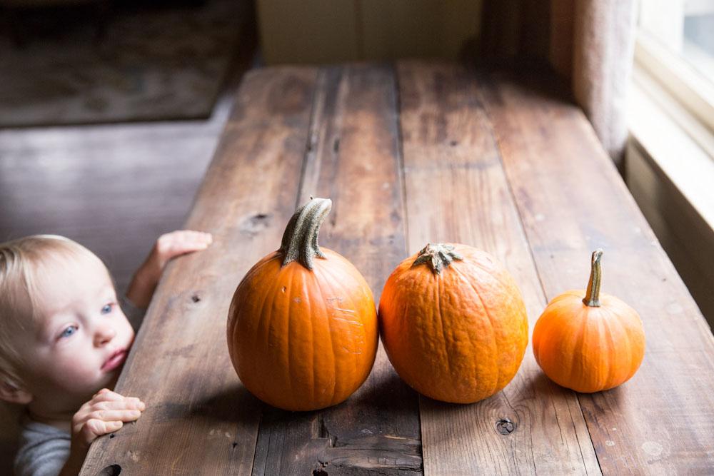 Homemade Pumpkin Puree Recipe • theVintageMixer.com