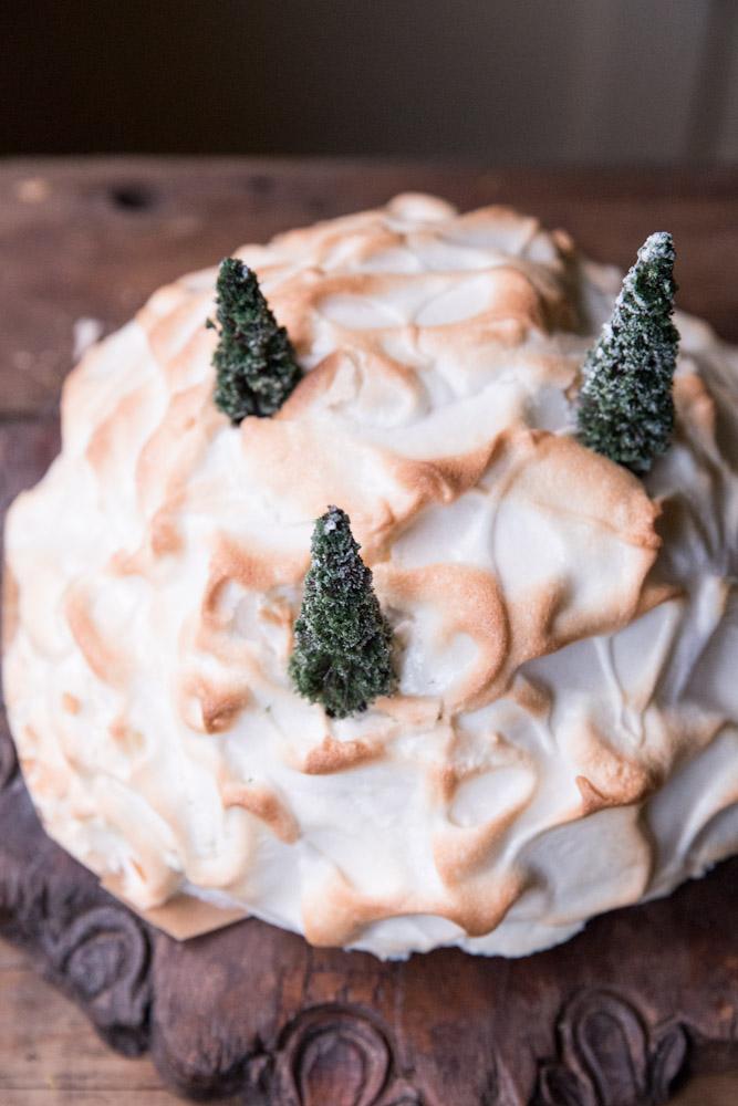 Red Velvet Baked Alaska Christmas Cake • theVintageMixer.com #Christmas