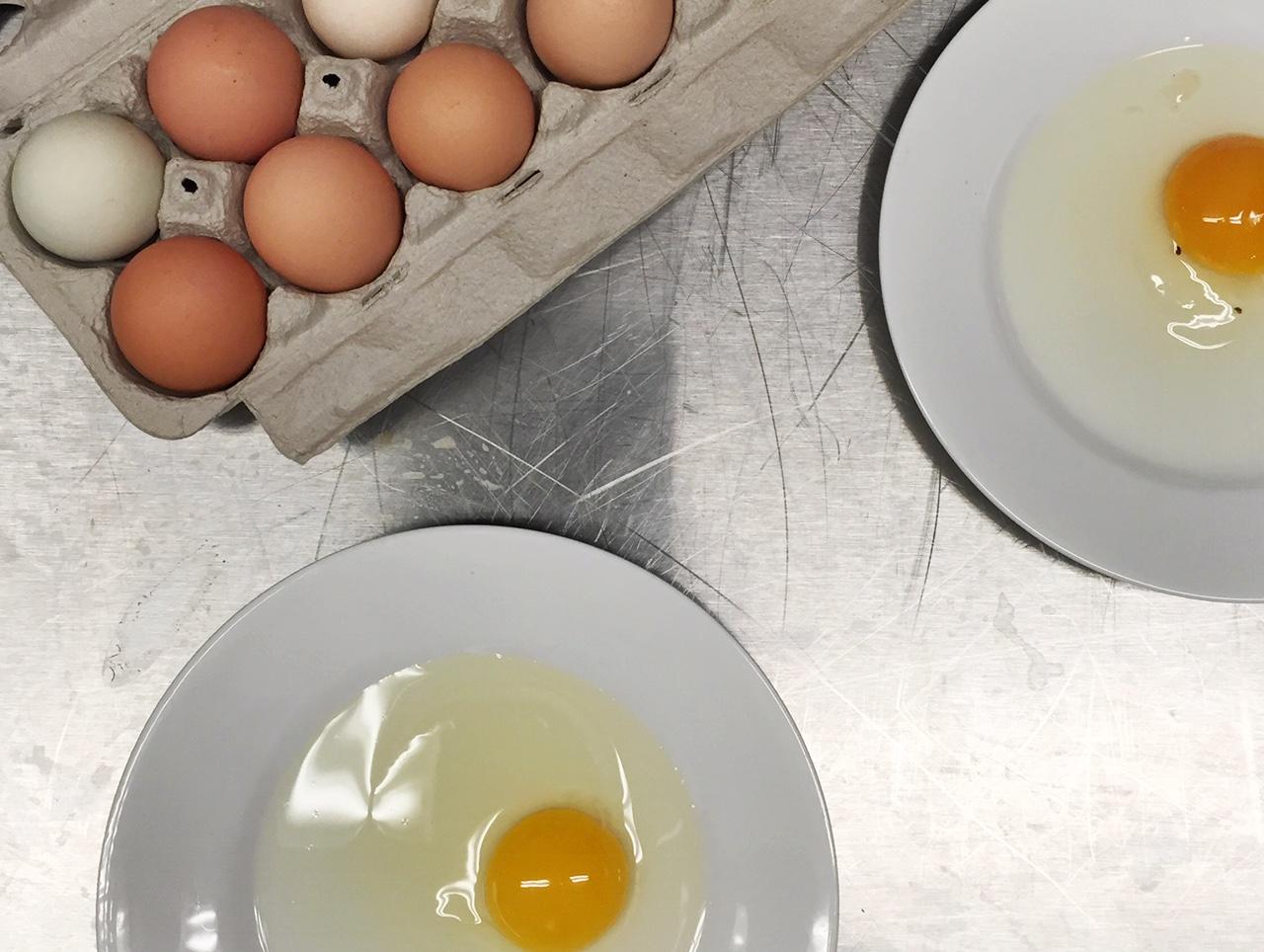 eggs Culinary School