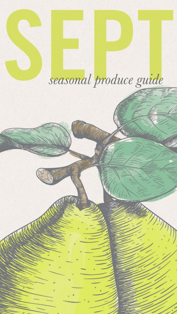 Plan your meals based on what's in season with this Seasonal Produce Guide • theVintageMixer.com #eatseasonal