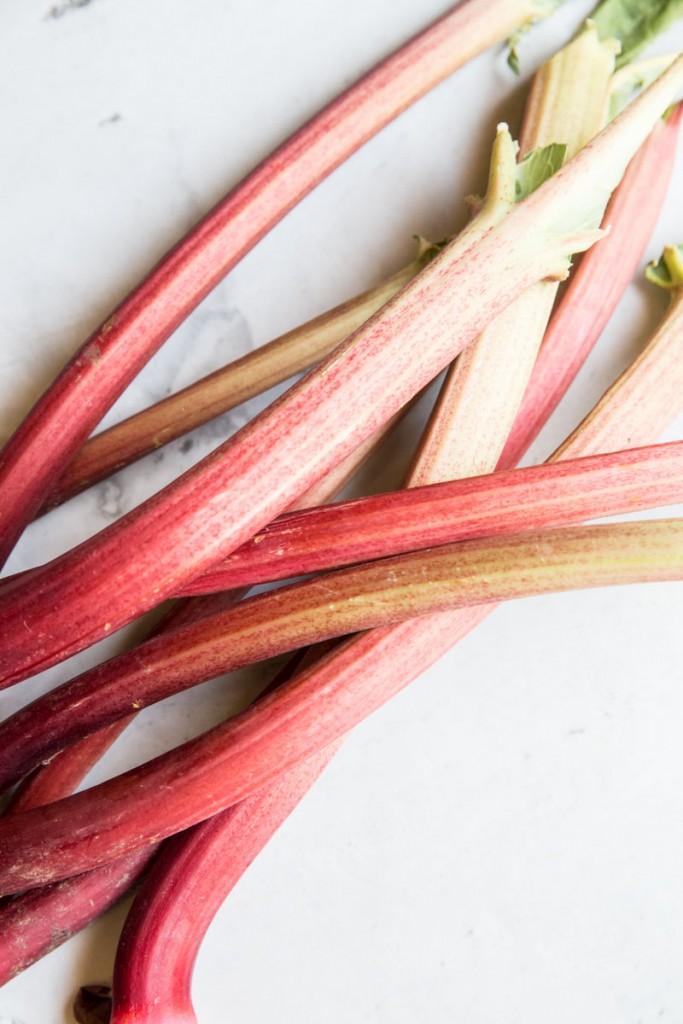 Rhubarb Custard Cake Recipe • theVintageMixer.com #cake #custardcake #rhubarb #rhubarbdessert #eatseasonal