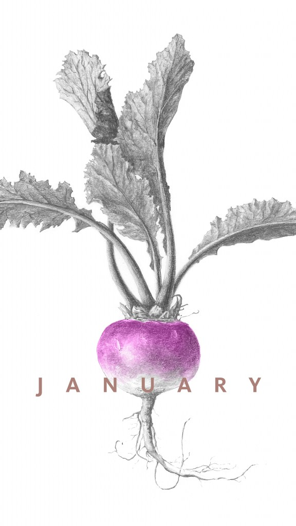 January Seasonal Produce Guide