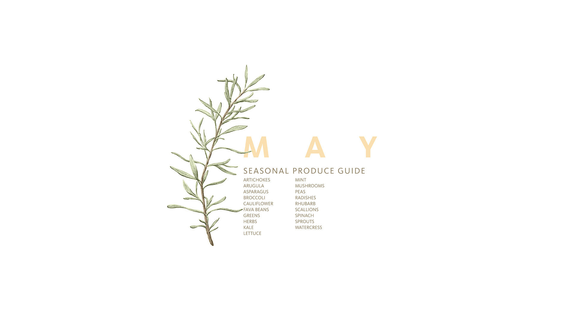 A List of What's in Season in May • theVintageMixer.com #eatseasonal #healthyrecipes