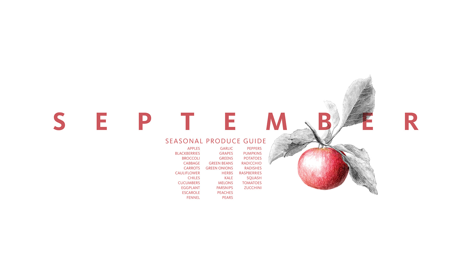 Here's a great list of what's fresh to eat and cook with for the month of September.