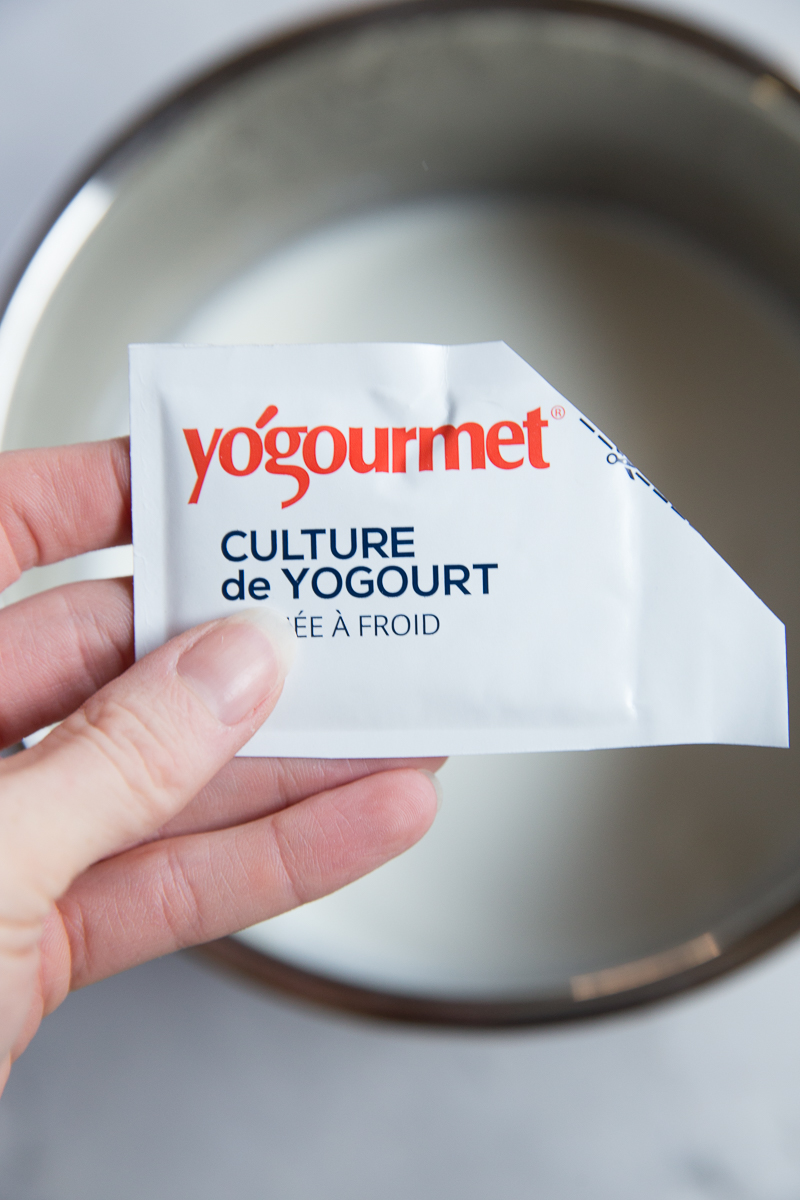Yogurt Culture for making Greek Yogurt